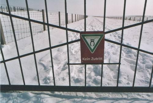 """NSG """"Petkumer Deichvorland"""" , Febr. 2005, Bild E.V."""