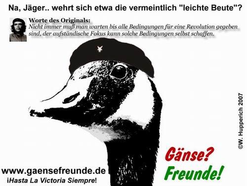 Gans_Guevara_ (C) Werner Hupperich