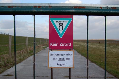 Anti-Jogger im NSG Petkumer Deichvorland