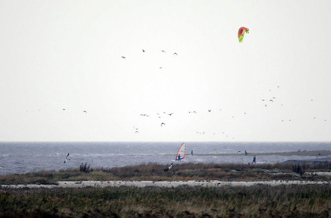 Kiter Upleward, 3.10.2009 Foto: (c) Voß