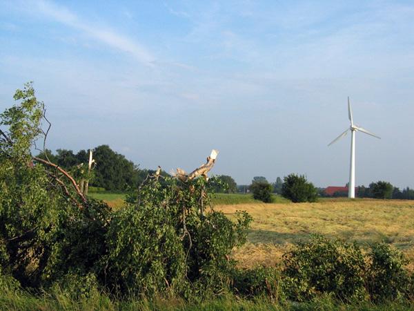 Abgeknickte Bäume, Windkraftanlage mit zerstörter Abdeckung